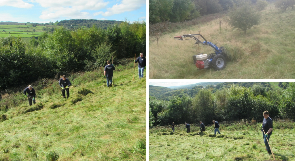 Volunteers working in Bitholmes Wood Meadow