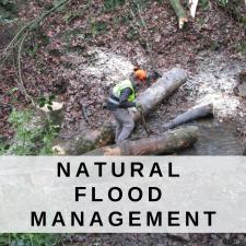 Natural Flood Management