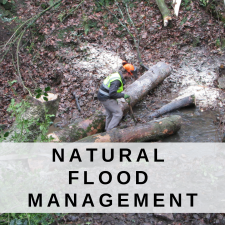 Natural Flood Management