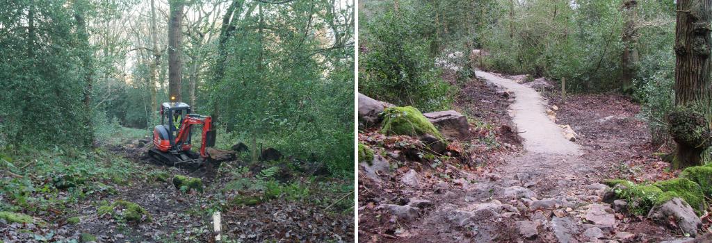 Birks Wood